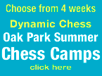 Dynamic Summer Camp